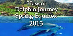 Dolphin Journey 2013
